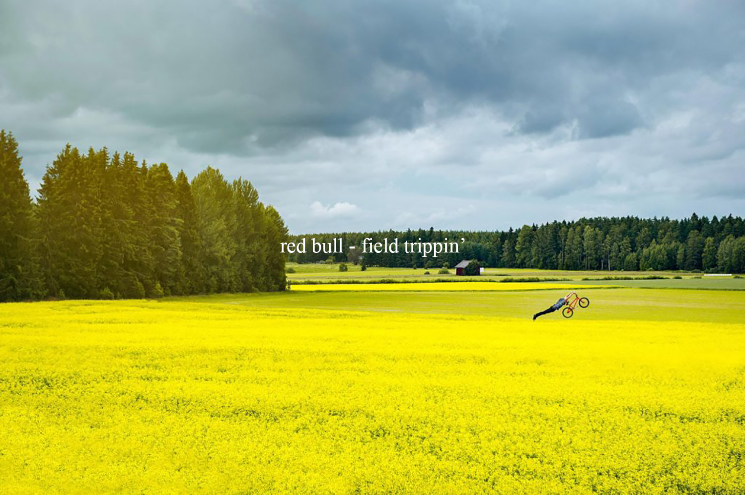 Red Bull – Field trippin'