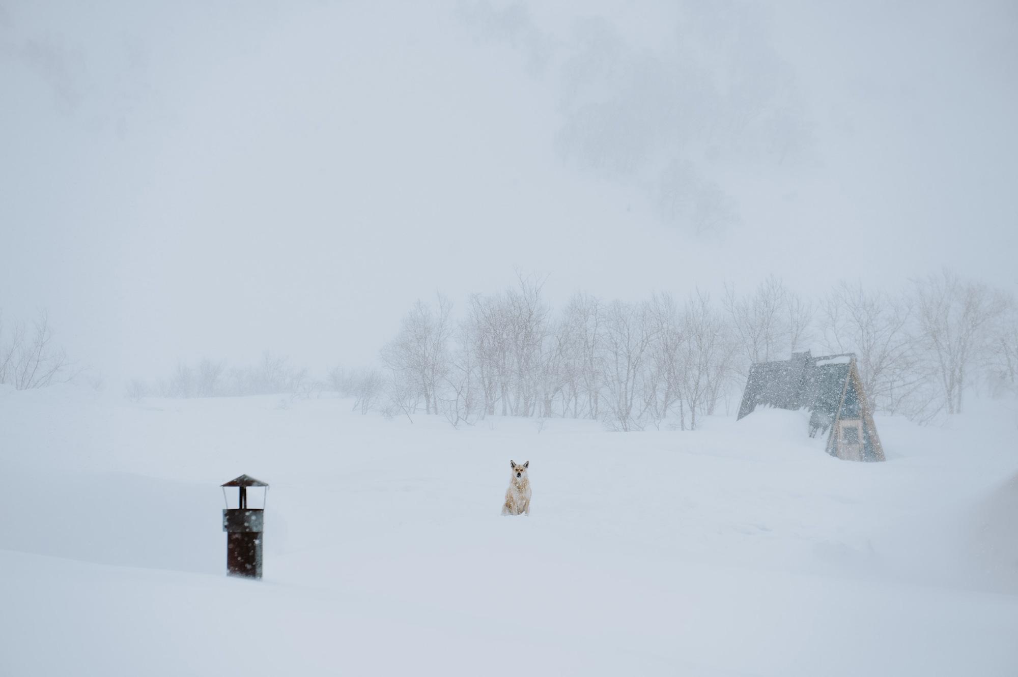 AKP_Kamchatka_Ski_LOW-5840